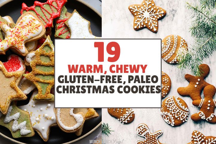 19 Easy Paleo & Gluten-Free Christmas Cookie Ideas – Recipes, Tutorials, Tips