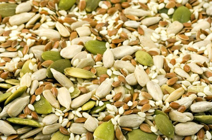mix of vegetarian protein sources nuts and seeds like sunflower, pumpkin, hemp, and more